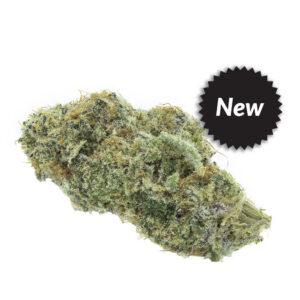 City Cannabis gnomestar-craft-cammabis-meat-breath